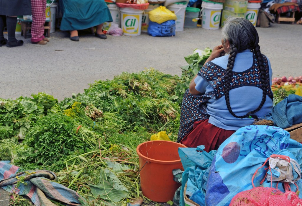 I was captivated by the bright piles of lettuce and the woman's indigenous Quechuan hairstyle - 2 braids tied together at the bottom.